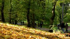People walking - path - Autumn park (forest - trees) - Fallen leaves - sunny - stock footage