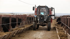 Tractor carries hay on a farm Stock Footage