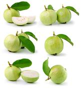 Guava (tropical fruit) on white background Stock Photos