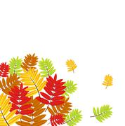Stock Illustration of background for a design with the autumn leaves of wild ash