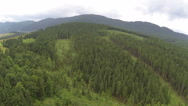 Stock Video Footage of Flight over   wood in mountains. Aerial  shot