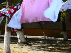 Linen on a rope. This video is also in my portfolio in the HD format. Stock Footage