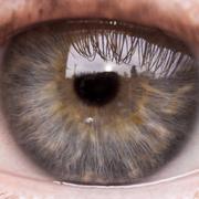 Close up of human eye Stock Photos