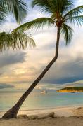 Antigua and Barbuda, Antigua, View from Coconut Grove towards Dickenson Bay Stock Photos