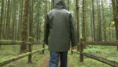 Lush Forest Trail Hiker 2 Stock Footage