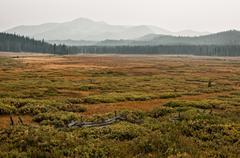 USA, Idaho, Custer County, Stanley, Smokey Mountains in foggy day - stock photo