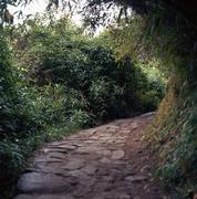 Peru, Departamento de Cusco, Urubamba, Machupicchu, Path to Inca Bridge - stock photo