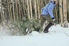 Man dragging christmas tree in snow Stock Photos