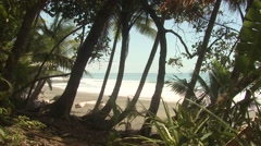 Ocean Corcovado National Park Winter Tropical Beach Shore Jungle Stock Footage
