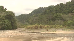 Forest Corcovado National Park Winter Rainforest Jungle Dry Riverbed Stock Footage
