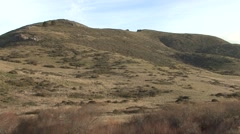 Prairie Golden Gate National Recreation Area Winter Coastal Grasslands Maritime Stock Footage