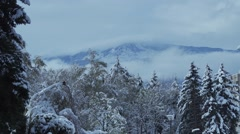 Winter landscape with snowy trees and mountains in the background Stock Footage