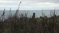 Grass in foreground of a tower and ruin. Ocean in the background, Peel Castle Stock Footage