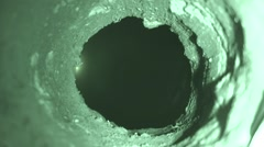 Mustelids Western Region Spring Night Full Moon Night Burrow Underground Stock Footage
