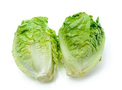 Lettuce leaves isolated on white background Stock Photos