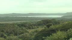 Savannah Isimangaliso Wetland Park Winter Bush - stock footage