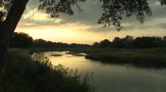 River & Stream Kruger National Park Winter Dusk - stock footage