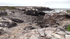 Ocean Galapagos Islands Fall Rocky Shore Coast Espanola Pan Stock Footage