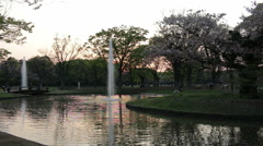 People walking and relaxing in Yoyogi park Japan at sunset near lake, fountain - stock footage