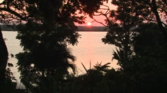 Lake & Pond Lamanai Winter Sunrise Jungle Stock Footage
