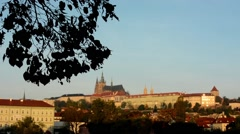 City (buildings) - Prague castle (Hradcany) with branch tree - morning  Stock Footage
