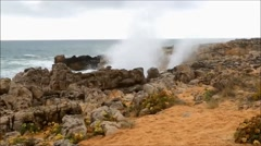 Blowhole Stock Footage
