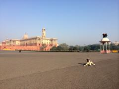 India, New Delhi, Vijay Chowk, A stray dog sitting in the middle of road - stock photo