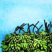 Brazil, Amazonas, Stack of bananas in front of blue wall - stock photo