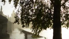 Charles bridge with tree - sunrise - Prague, Czech Republic - river Vltava - stock footage