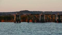 Old wooden pillars on the sea Stock Footage