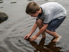 Boy (8-9) chasing frog - stock photo