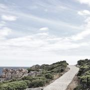 Stock Photo of South Africa, Western Cape, Overberg District Municipality, Hermanus, Pathway