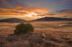 USA, California, Cuyamaca Rancho State Park at sunset Stock Photos