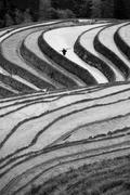 China, Guangxi, Guilin City, Longsheng Various Nationalities Autonomous County, Stock Photos