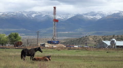 Oil well drilling farm horse property HD 014 Stock Footage