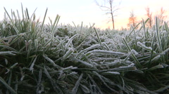 Heavy frost on the ground on a cold late autumn morning at sunrise Stock Footage