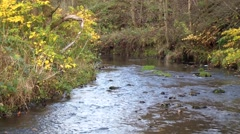 River Upstream Scene Stock Footage