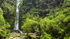 Erskine falls waterfall Stock Footage