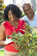 senior african american man woman couple gardening - stock photo