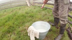 farmer in Boots washes his hands in a pail standing on green grass - stock footage