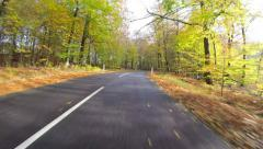 Driving through the forest on a rainy autumn day Stock Footage