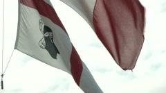 Stock Video Footage of Regional flag of Sardinia waving