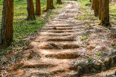 ground or clay stair - stock photo