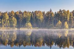 Autumnal lake near the forest Stock Photos