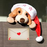 Plush dog with Santa´s hat Stock Photos