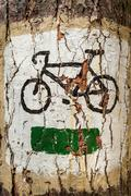 bicycle symbol on the tree as tourist track - stock photo