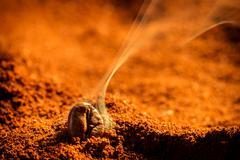 Aroma of coffee seeds roasting Stock Photos