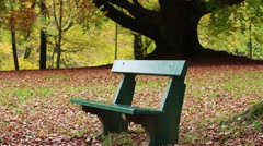 Bench in autumn park - stock footage