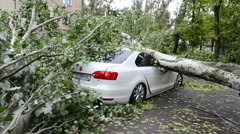 The car destroyed by a hurricane. This video is also in my portfolio in the HD  Stock Footage