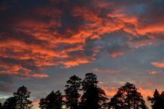 Crimson sunset Stock Photos